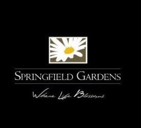 Springfield Gardens